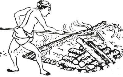 Reis Abkühlen historisch
