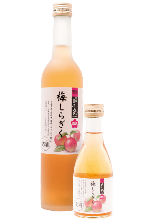 SHIRAGIKU Aka Ume